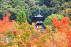 Tahoto Pagoda with autumn leaves in Eikando, Kyoto Royalty Free Stock Photography