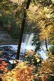 Tahquamenon Falls royalty free stock photos