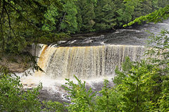 Tahquamenon Falls in Michigan's Upper Peninsula Stock Photography