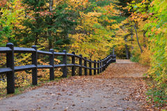 Tahquamenon Falls Path in Autumn Stock Photo