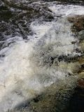 Tahquamenon Falls in upper Michigan royalty free stock photo