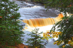 Tahquamenon Stream Royalty Free Stock Photo