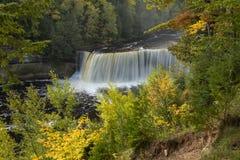Tahquamenon Upper Falls Stock Image