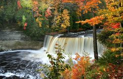 Tahquamenon Water Falls Stock Image