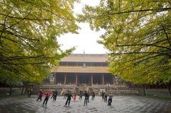 Tai凯爱 -- Chinees kung fu 免版税库存图片