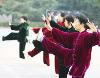 Tai Chi 太� Royalty Free Stock Images