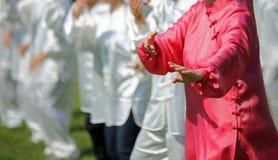 Tai Chi η γυναίκα πολεμικής τέχνης με το ρόδινο φόρεμα μεταξιού εκτελεί το exerc Στοκ Εικόνες