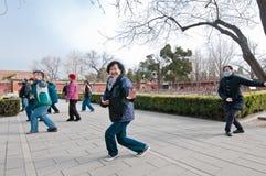 Tai chi κατάρτιση στοκ φωτογραφίες