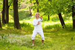 Tai chi. Adult woman exercising in the park Royalty Free Stock Images