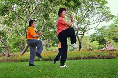 Tai Chi Royalty Free Stock Photo