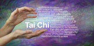 Tai Chi Benefits Word Cloud Immagine Stock Libera da Diritti