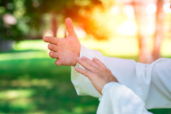 Tai chi chuan hands. Practice of Tai Chi Chuan in the park. Detail of hand positions royalty free stock images