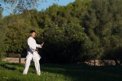 Tai-'chi' di pratica del giovane nel parco Fotografia Stock Libera da Diritti