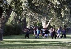 Tai chi in een park in Avignon royalty-vrije stock afbeelding