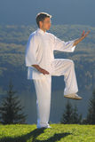 Tai Chi exercise in nature on green field Stock Images