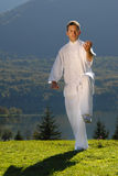 Tai Chi exercise in nature on green field Royalty Free Stock Photo
