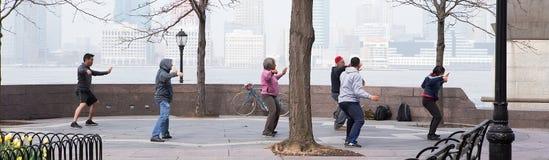 Tai Chi exercises on the banks of the Hudson, NY Royalty Free Stock Photo