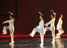 Tai Chi Kung Fu-The dance drama The legend of the Condor Heroes Royalty Free Stock Photos