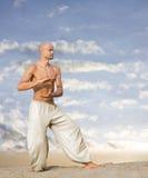 Tai Chi Martial Art Background stock photos