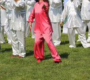 Tai Chi martial art Woman with pink silk dress perform the exerc Royalty Free Stock Image