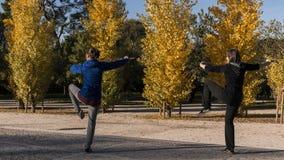 Tai chi met zwaard in het Retiro-park in de stad van Madrid Royalty-vrije Stock Afbeelding