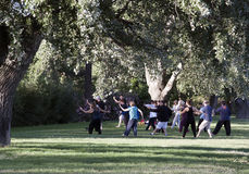 Tai chi in a park in avignon Royalty Free Stock Image