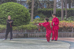 Tai Chi in the park Royalty Free Stock Photography
