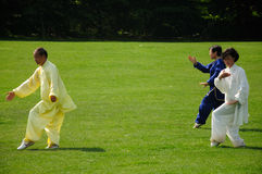 Tai Chi Performance Royalty Free Stock Images