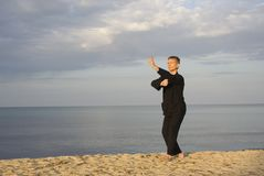 Tai chi - posture fist under elbow Stock Photos