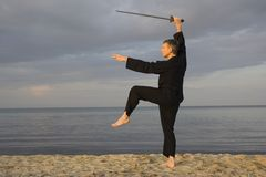 Tai chi - posture great star Royalty Free Stock Images