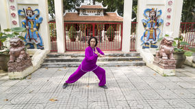 Tai Chi practice Royalty Free Stock Photos