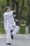 Tai Chi practitioners Stock Image