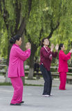 Tai Chi practitioners Stock Images