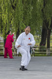 Tai Chi practitioners Royalty Free Stock Image