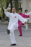Tai Chi practitioners Royalty Free Stock Photos