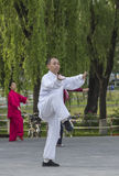 Tai Chi practitioners Royalty Free Stock Images