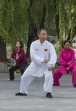 Tai Chi practitioners Royalty Free Stock Photo