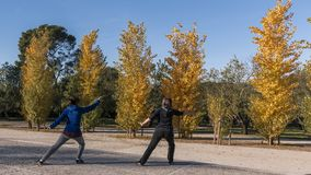 Tai chi with sword in the Retiro park in the city of Madrid royalty free stock photography