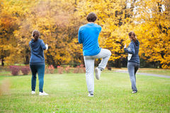 Tai chi. Training in a park in autumn Royalty Free Stock Photography