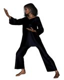 Tai Chi Woman - 1 Stock Photography
