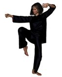 Tai Chi Woman - 2 Royalty Free Stock Photo