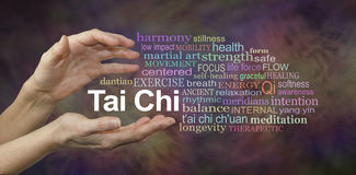 Tai Chi Word Cloud. Female hands cupped around the words TAI CHI surrounded by a relevant word cloud on a rich complex multi colored background royalty free stock image