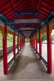 Tai Hing zwiania okręgu korzenia miasta Mangui Rzeczny miasteczko przy stopą sceniczny deptaka kondensata Greenfield fotografia stock