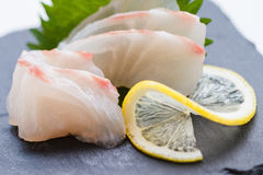 Free Tai Sashimi : Sliced Raw Tai Red Seabeam Fish Served With Sliced Radish On Stone Plate Stock Image - 82680121