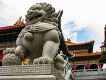 Tai Shi Foto de Stock Royalty Free