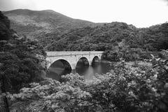 Tai Tam Reservoir Hong Kong Arkivfoto