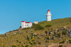 Taiaroa Head Lighthouse - New Zealand Stock Photo