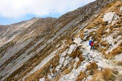 taibai пейзажа горы Стоковая Фотография