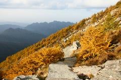 taibai пейзажа горы Стоковые Изображения