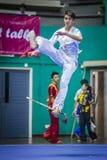 Taichi Wushu Fotos de Stock Royalty Free
